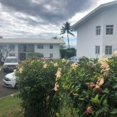 Revêtement à effet perlant PERLIFLEX avec fixateur O FIX PIGMENTE - Tahiti
